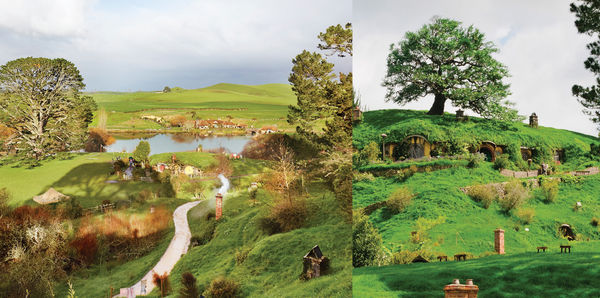 2021 NEW ZEALAND | 5 Day Experience The Trilogy Tours, family and couples holiday experience